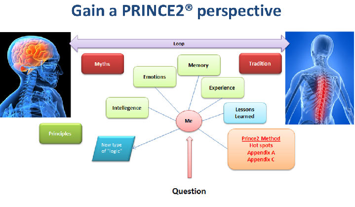 prince2 perspective